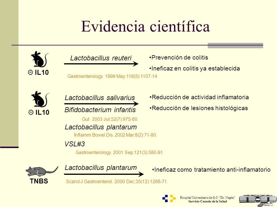 Evidencia científica Lactobacillus reuteri Θ IL10