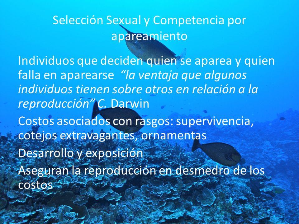 Selección Sexual y Competencia por apareamiento