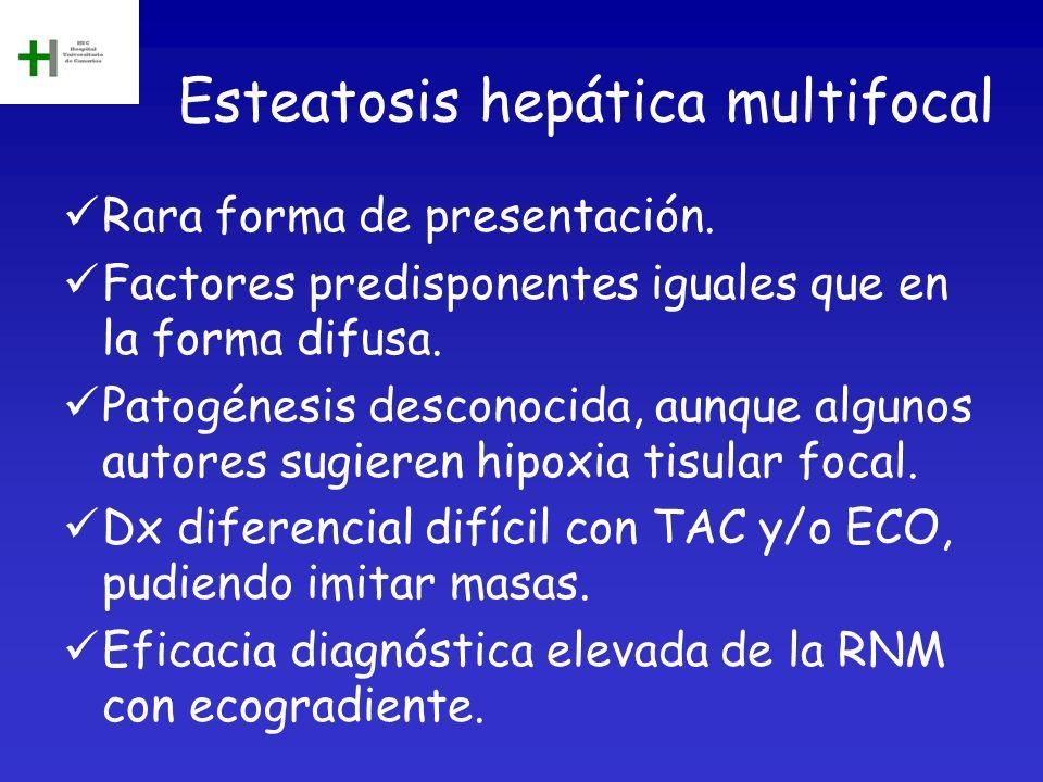 Esteatosis hepática multifocal