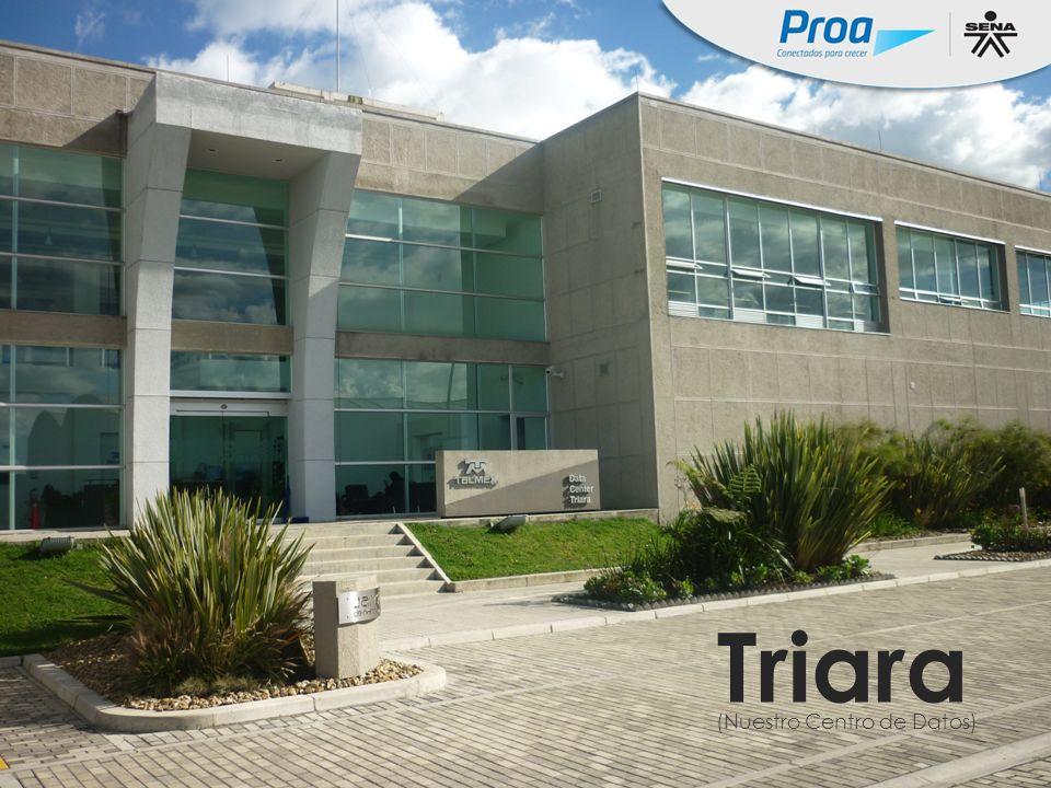 Triara - Foto Triara (Nuestro Centro de Datos)