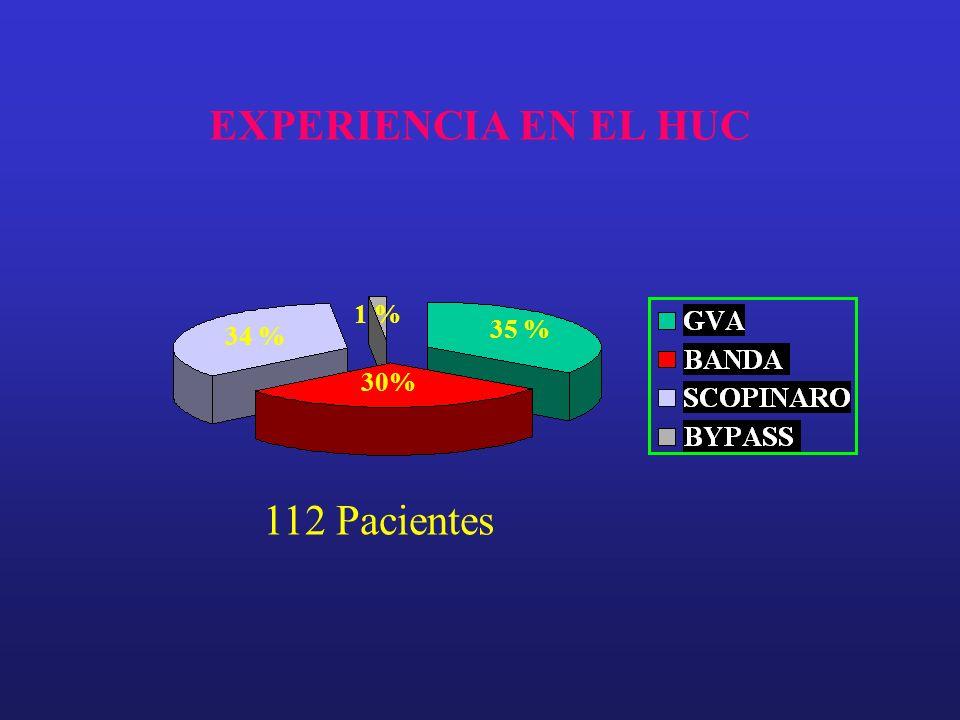 EXPERIENCIA EN EL HUC 1 % 35 % 34 % 30% 112 Pacientes