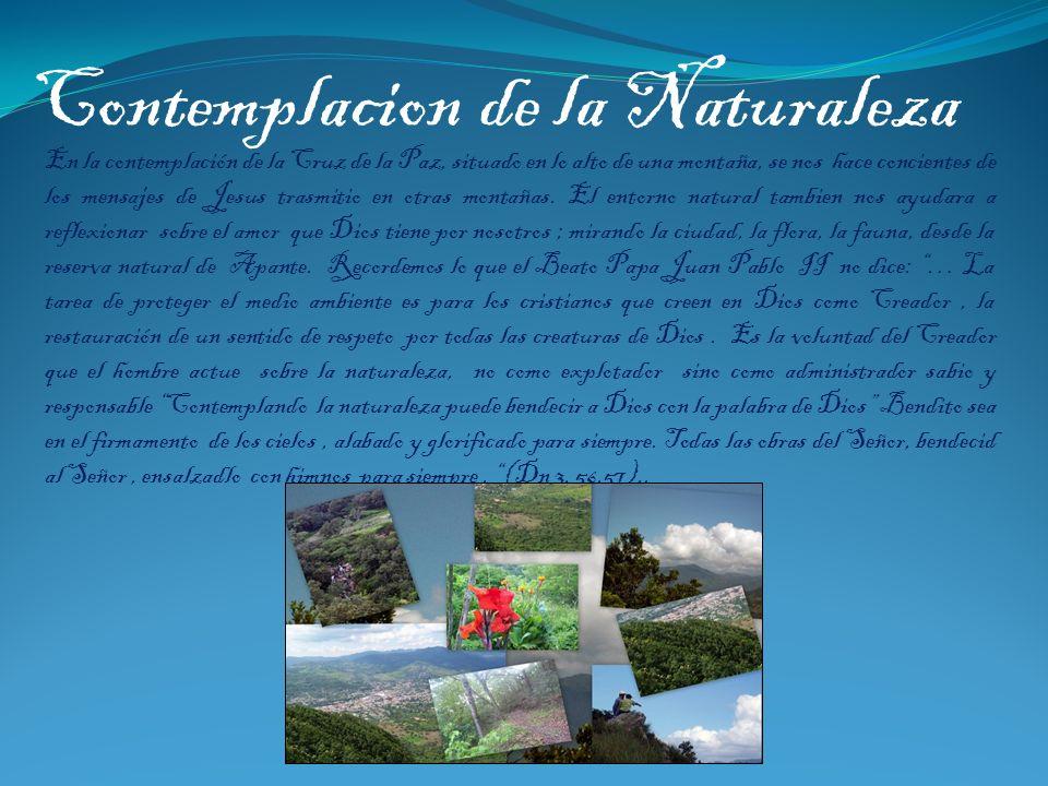 Contemplacion de la Naturaleza