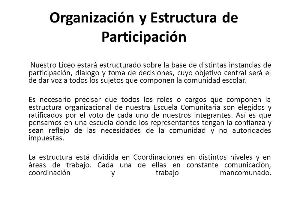 Organización y Estructura de Participación