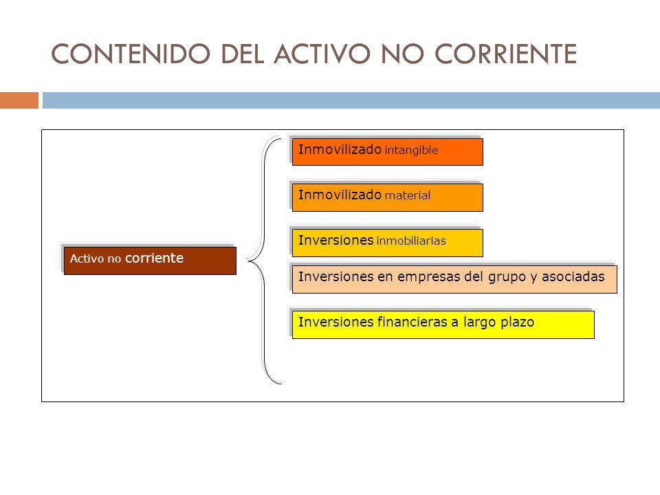 CONTENIDO DEL ACTIVO NO CORRIENTE