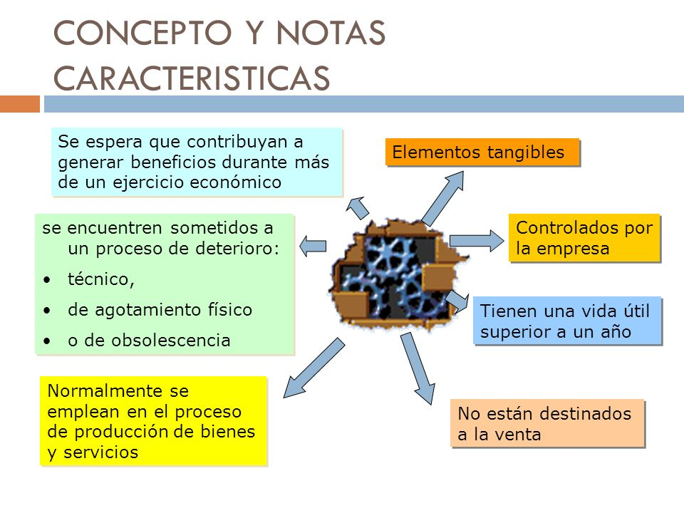 CONCEPTO Y NOTAS CARACTERISTICAS