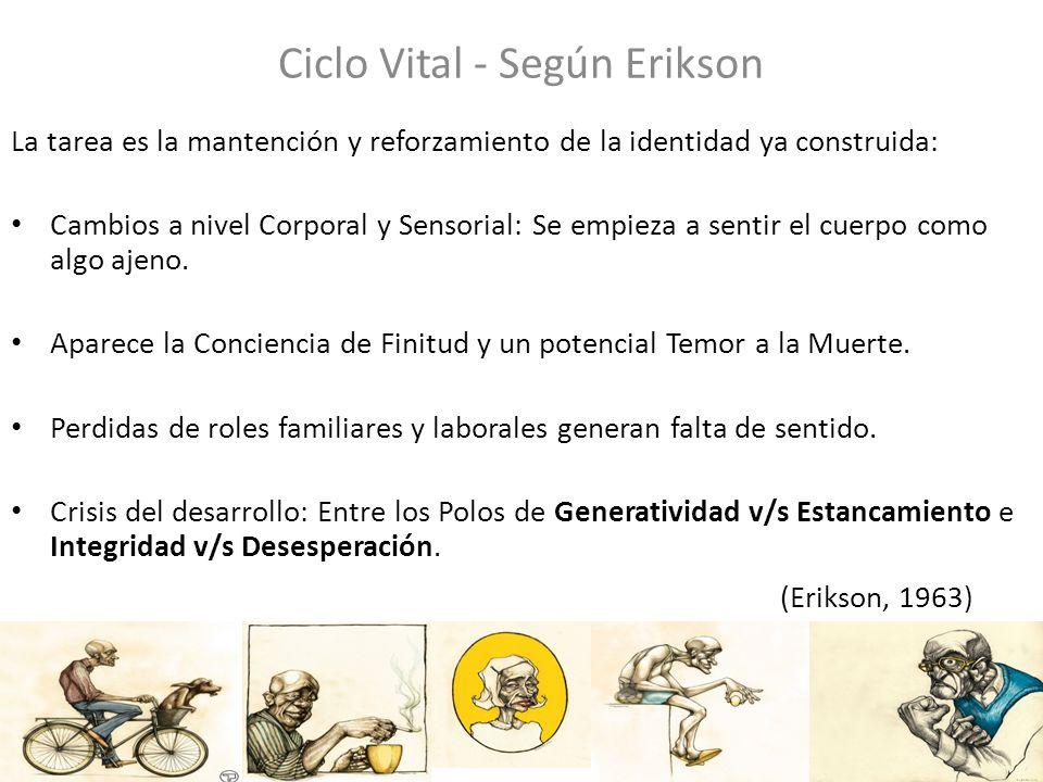 Ciclo Vital - Según Erikson