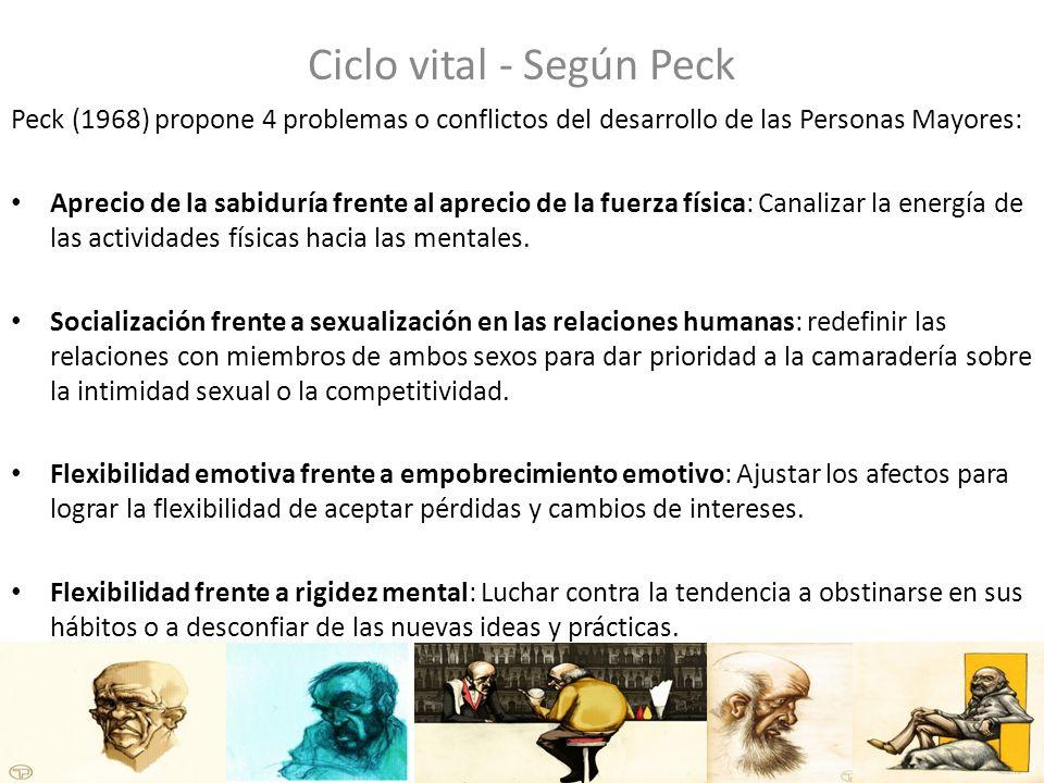 Ciclo vital - Según Peck