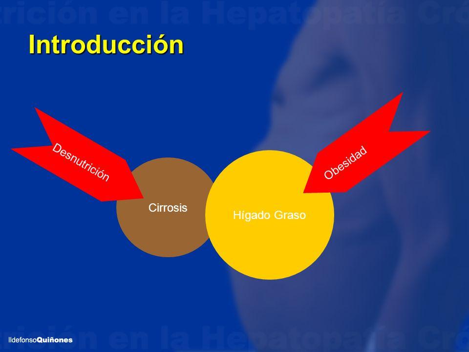 Introducción Obesidad Desnutrición Hígado Graso Cirrosis
