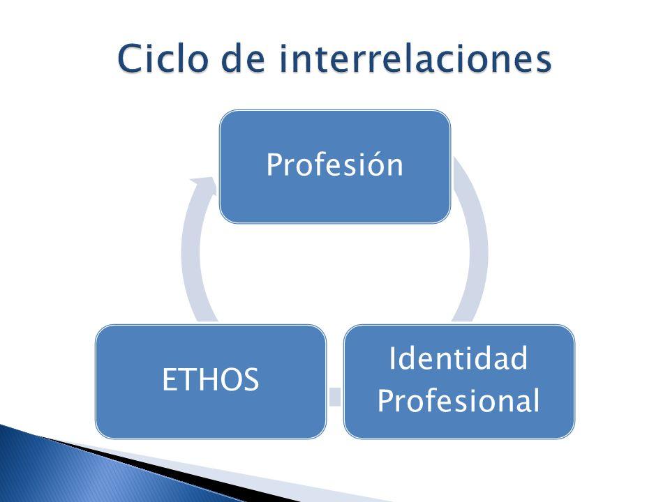 Ciclo de interrelaciones