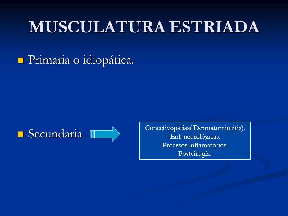 MUSCULATURA ESTRIADA Primaria o idiopática. Secundaria