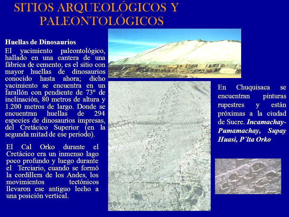SITIOS ARQUEOLÓGICOS Y PALEONTOLÓGICOS