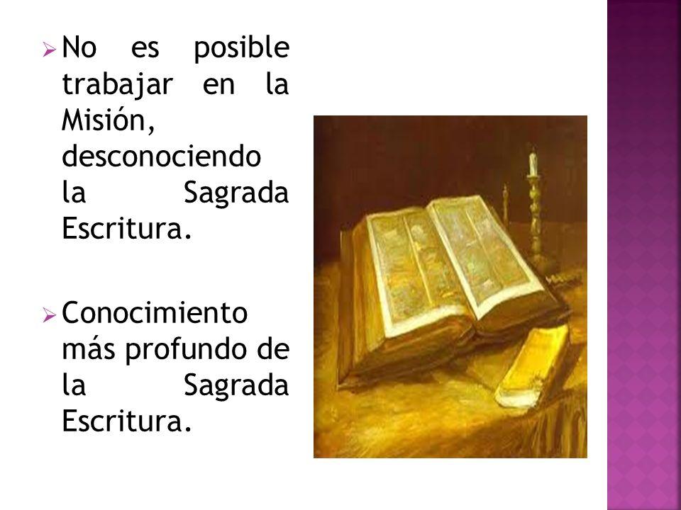 No es posible trabajar en la Misión, desconociendo la Sagrada Escritura.