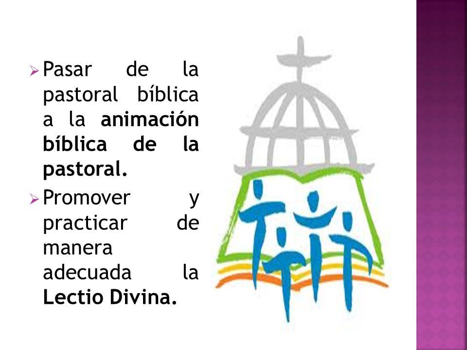 Pasar de la pastoral bíblica a la animación bíblica de la pastoral.