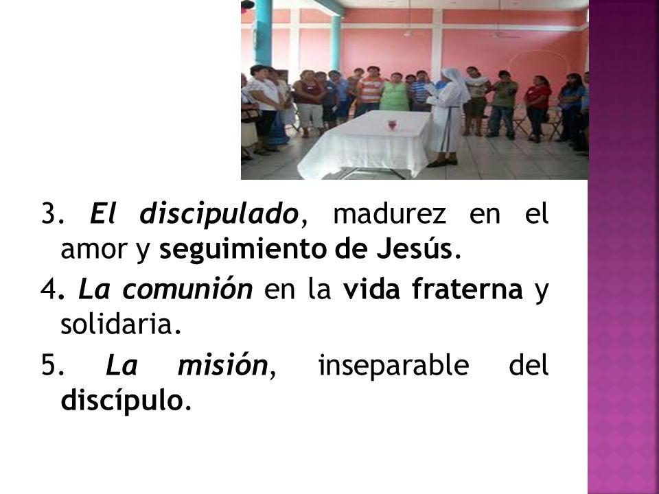 3. El discipulado, madurez en el amor y seguimiento de Jesús.