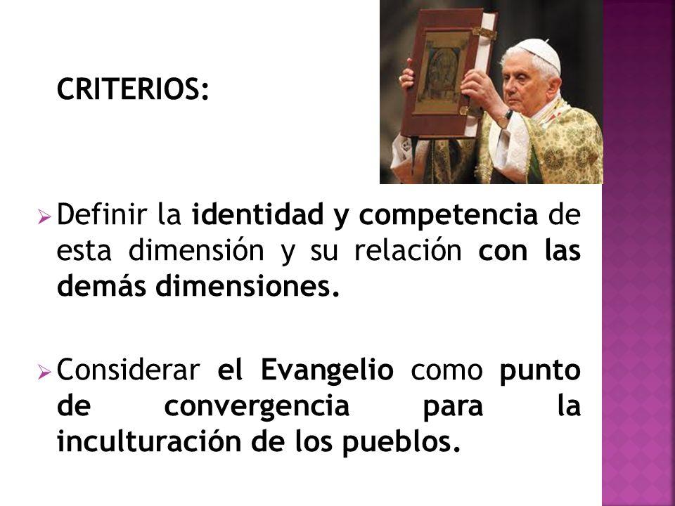 CRITERIOS: Definir la identidad y competencia de esta dimensión y su relación con las demás dimensiones.