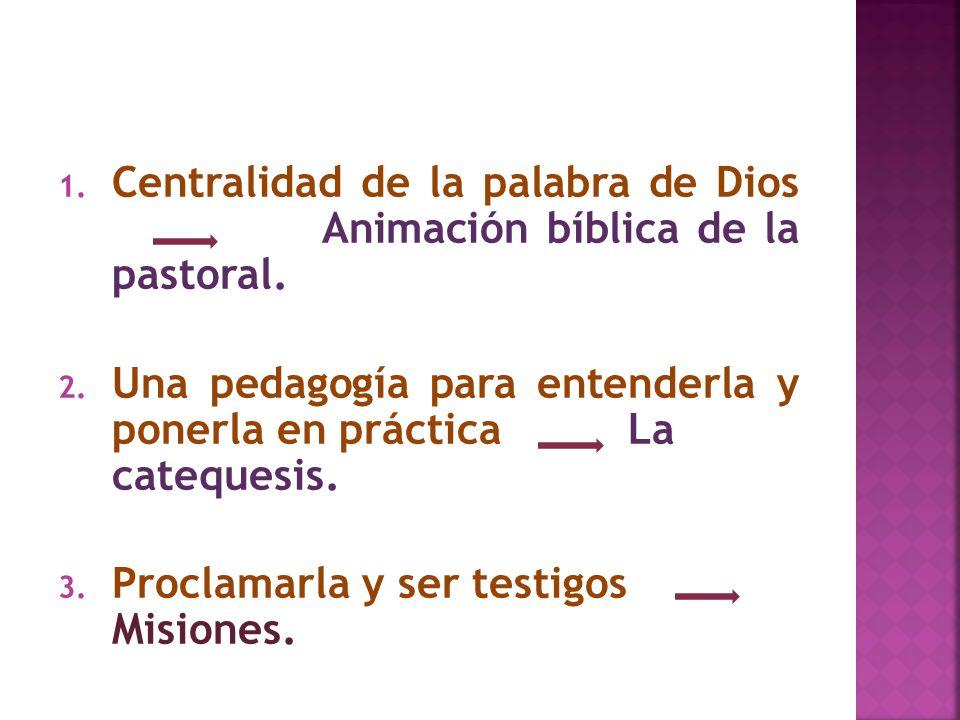 Centralidad de la palabra de Dios Animación bíblica de la pastoral.
