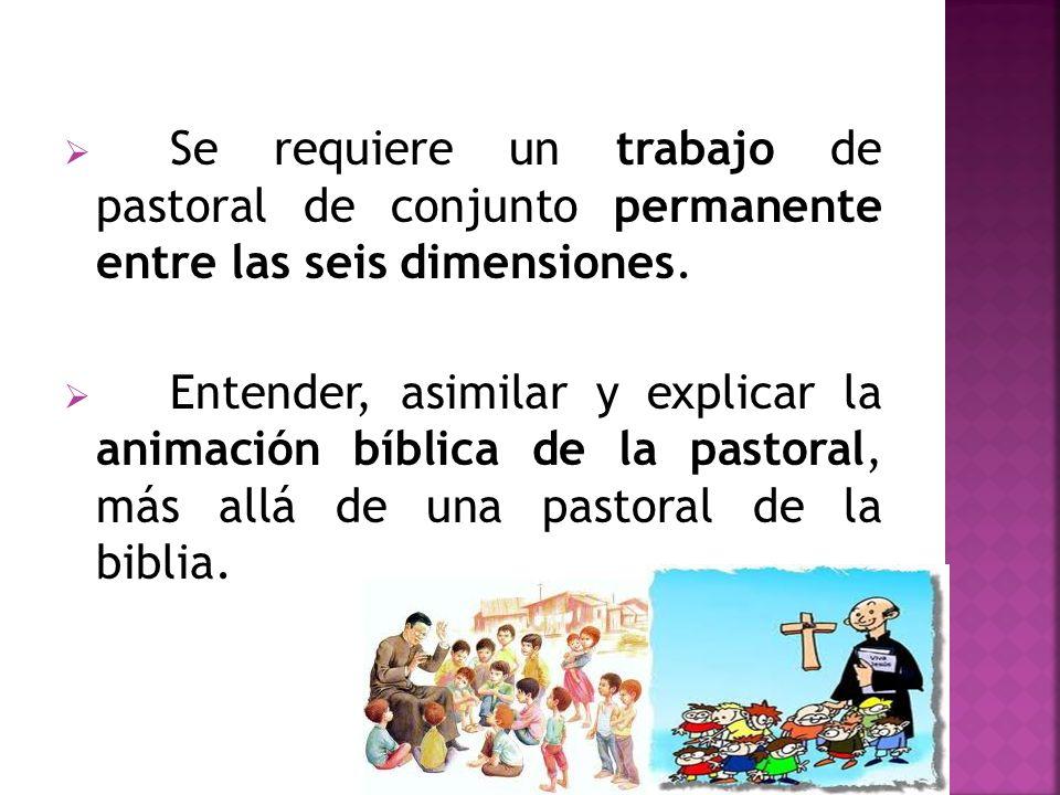 Se requiere un trabajo de pastoral de conjunto permanente entre las seis dimensiones.