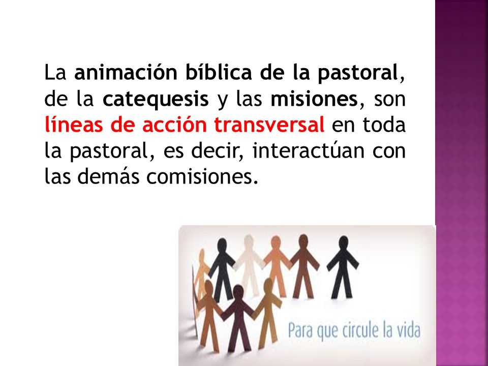 La animación bíblica de la pastoral, de la catequesis y las misiones, son líneas de acción transversal en toda la pastoral, es decir, interactúan con las demás comisiones.