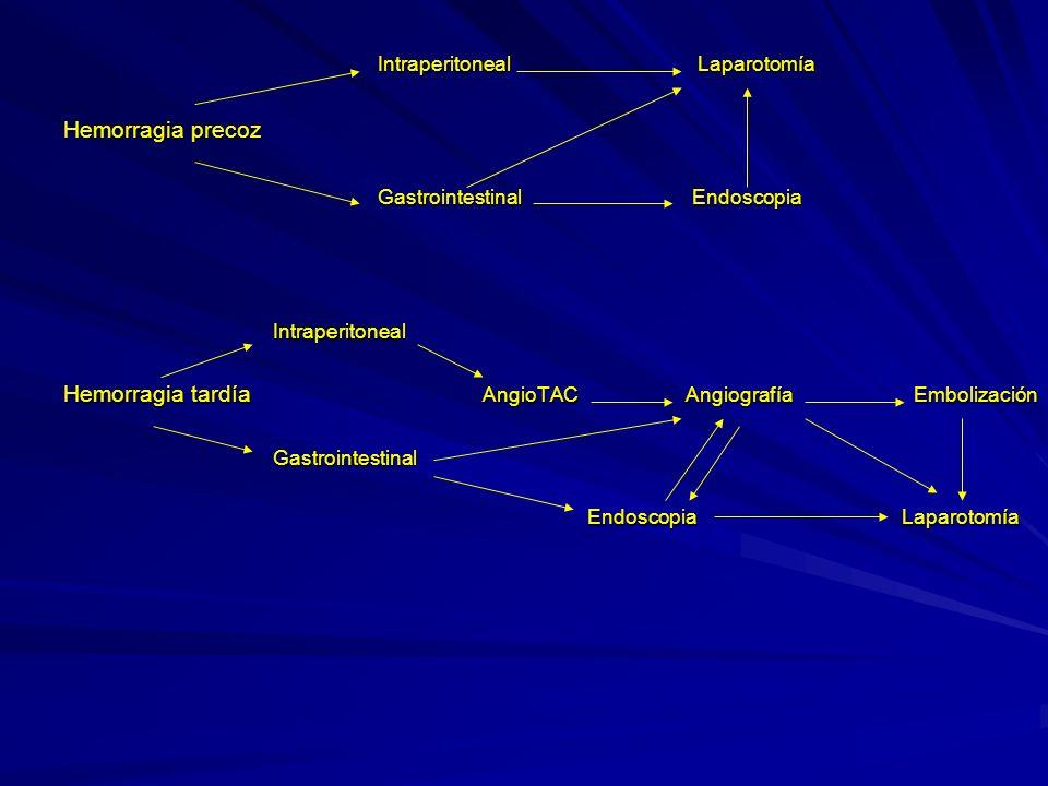 Gastrointestinal Endoscopia