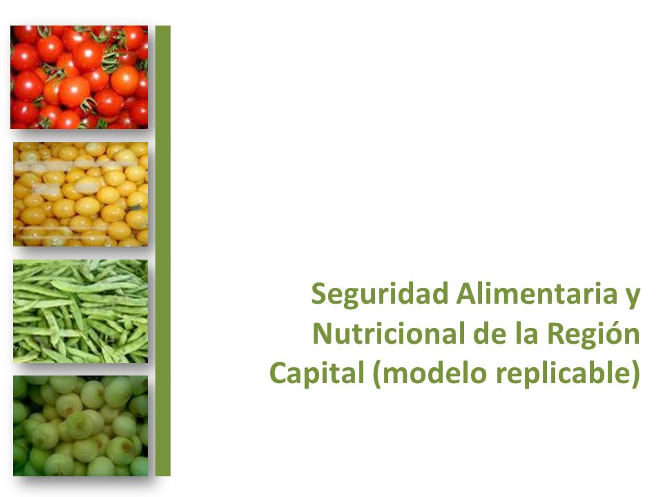 Seguridad Alimentaria y Nutricional de la Región Capital (modelo replicable)