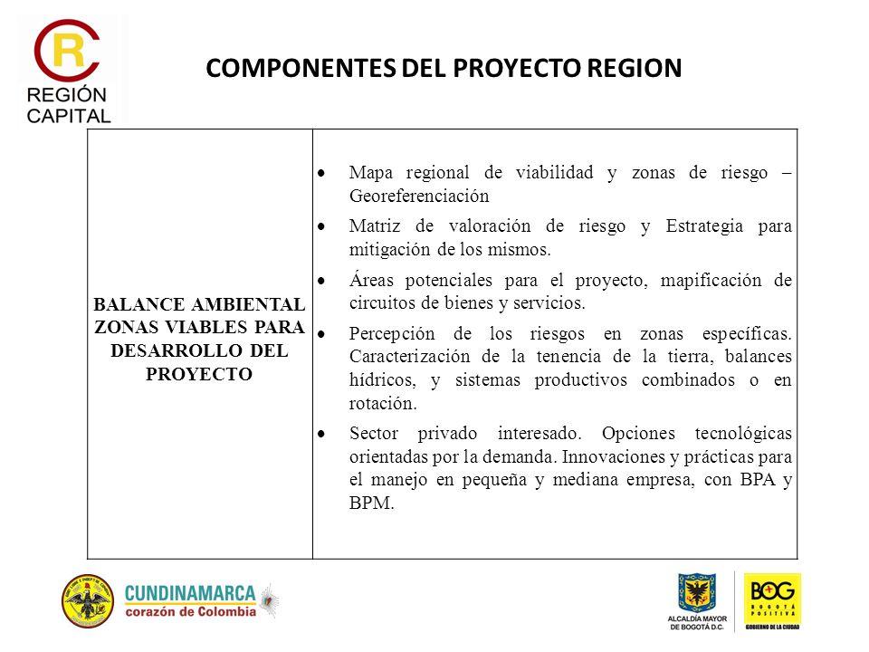 COMPONENTES DEL PROYECTO REGION