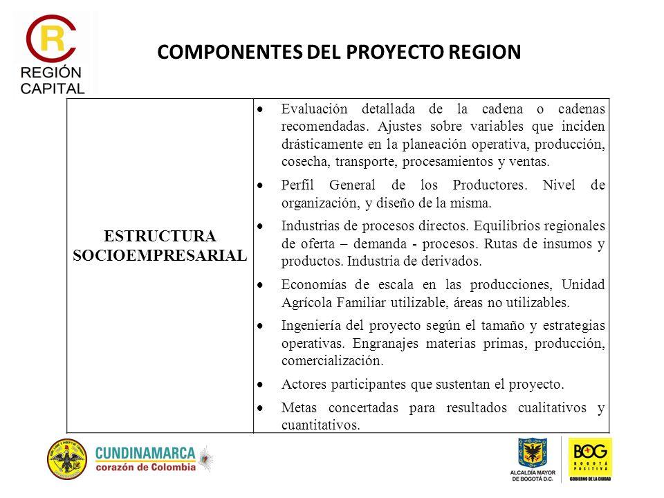 COMPONENTES DEL PROYECTO REGION ESTRUCTURA SOCIOEMPRESARIAL