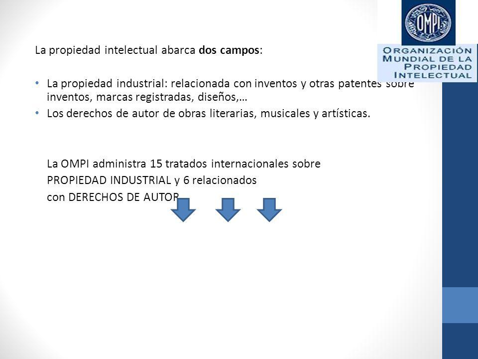 La propiedad intelectual abarca dos campos: