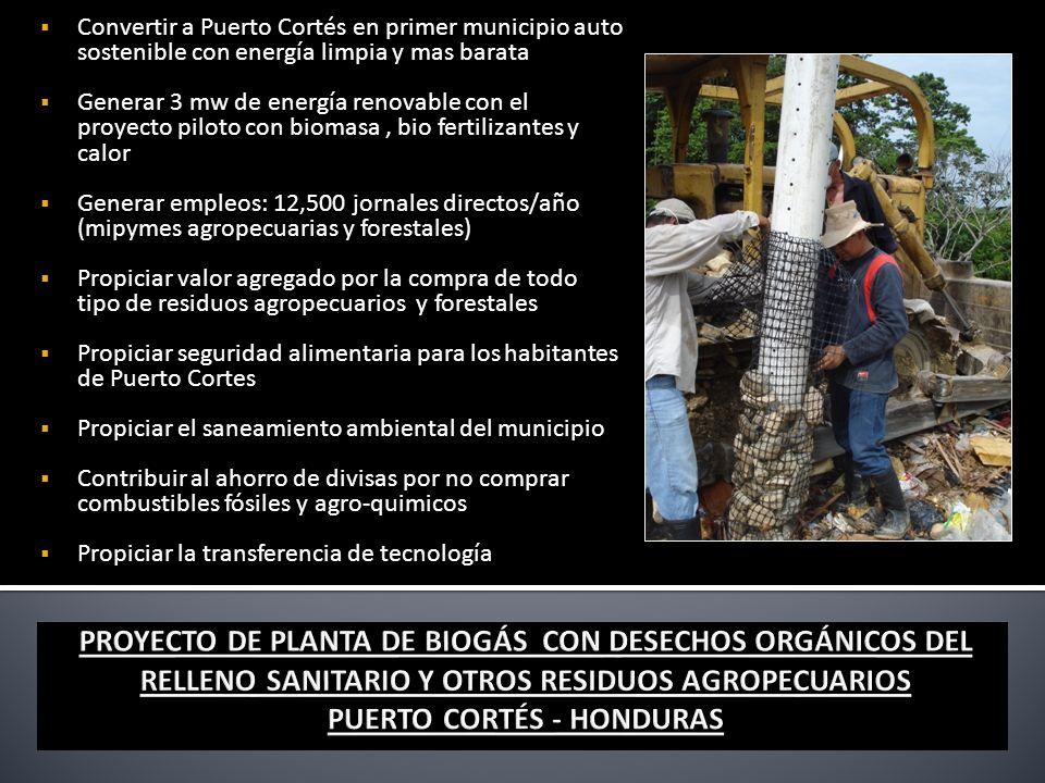 Convertir a Puerto Cortés en primer municipio auto sostenible con energía limpia y mas barata