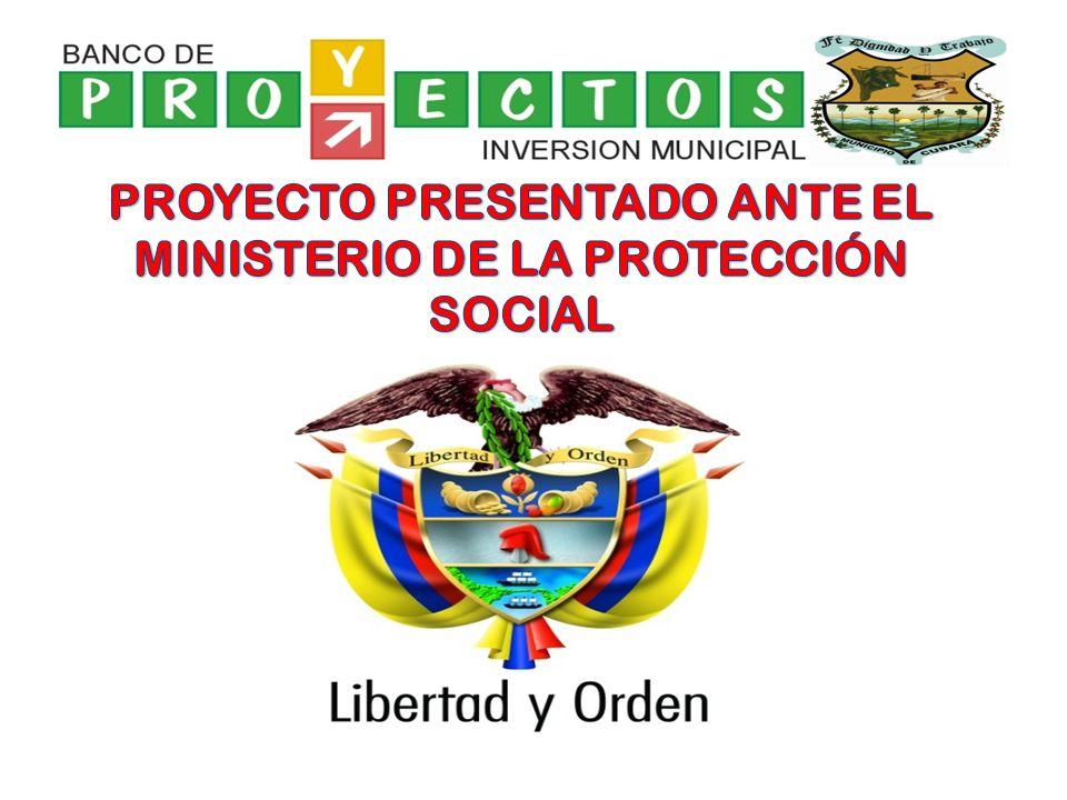 PROYECTO PRESENTADO ANTE EL MINISTERIO DE LA PROTECCIÓN SOCIAL