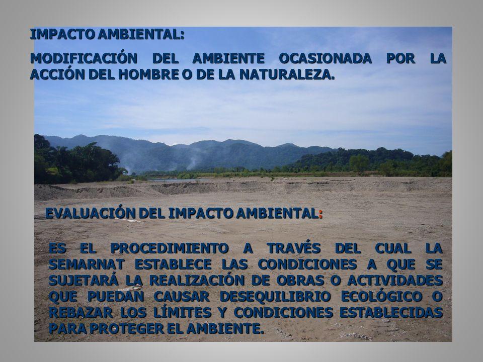 IMPACTO AMBIENTAL: MODIFICACIÓN DEL AMBIENTE OCASIONADA POR LA ACCIÓN DEL HOMBRE O DE LA NATURALEZA.