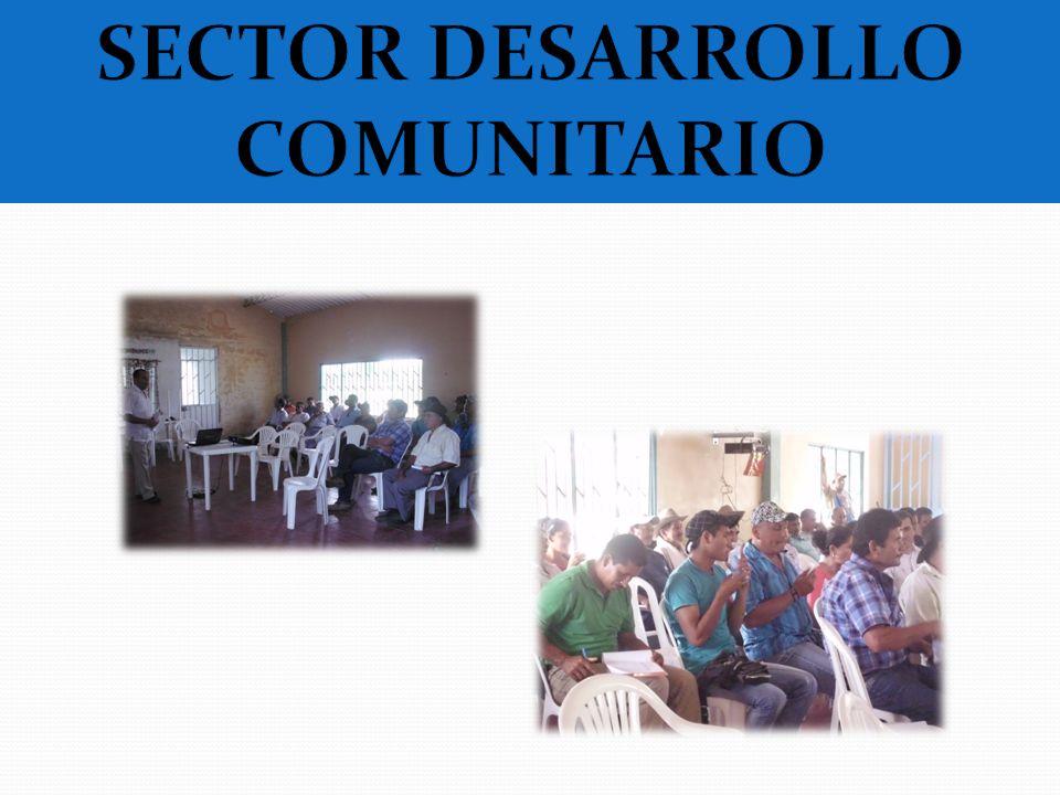 SECTOR DESARROLLO COMUNITARIO