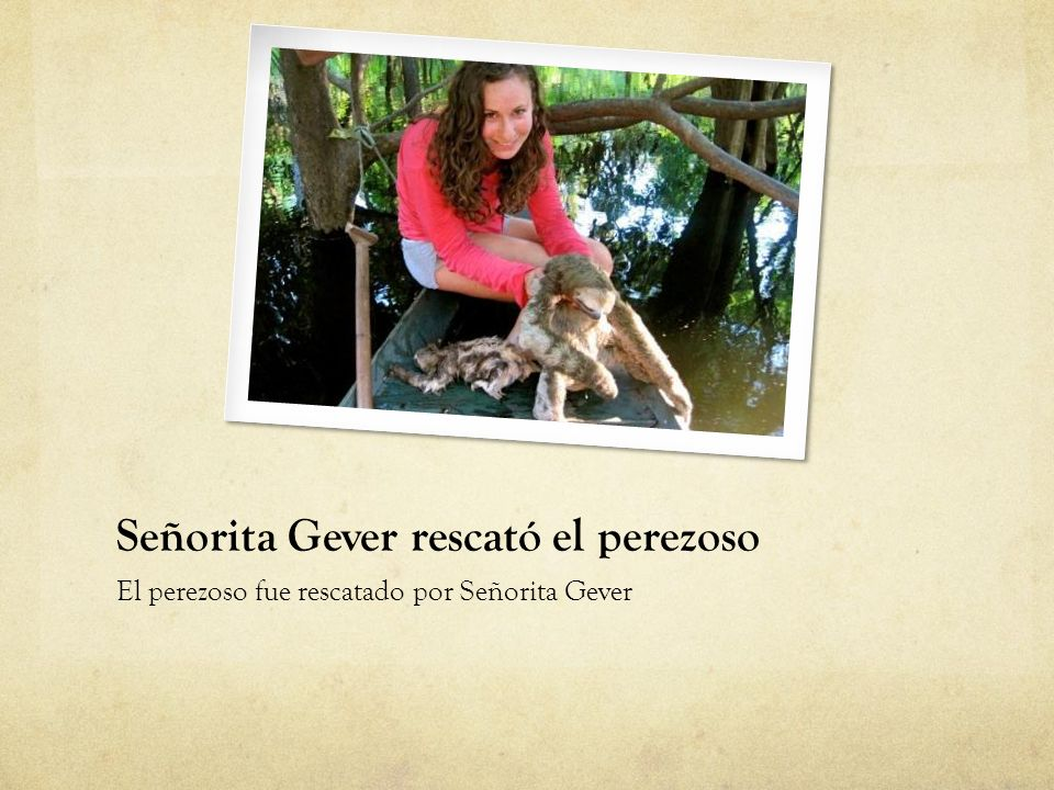 Señorita Gever rescató el perezoso