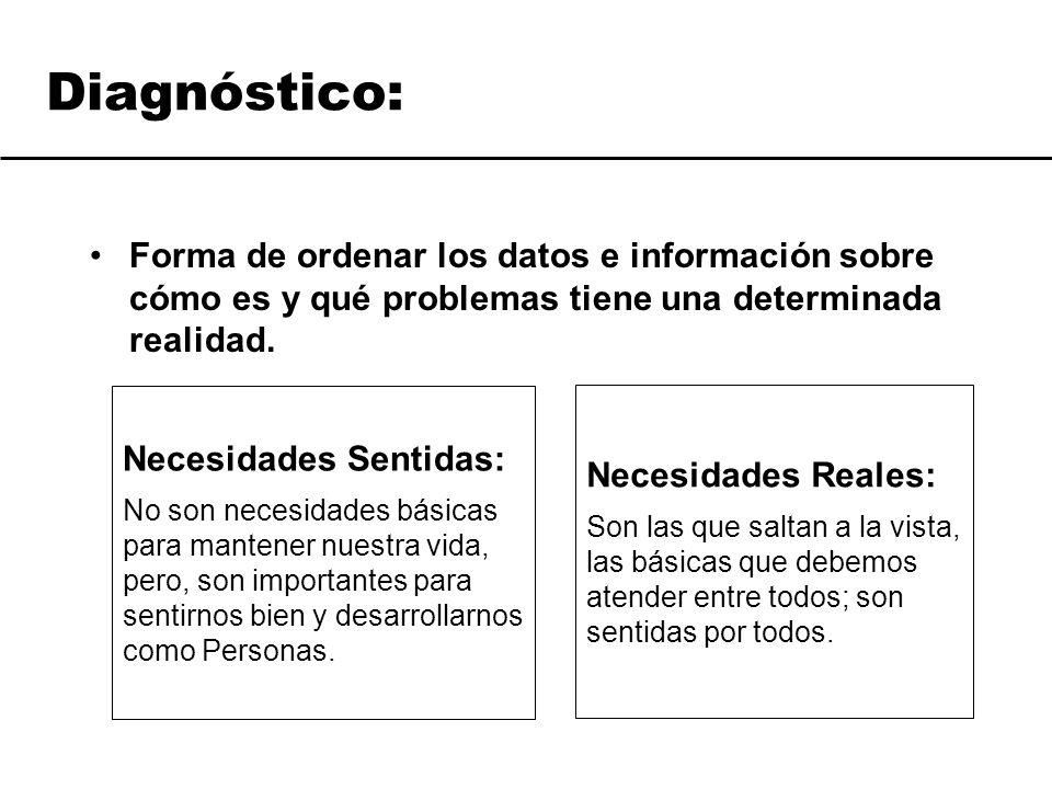 Diagnóstico: Forma de ordenar los datos e información sobre cómo es y qué problemas tiene una determinada realidad.