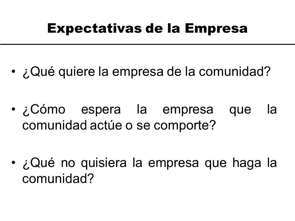 Expectativas de la Empresa