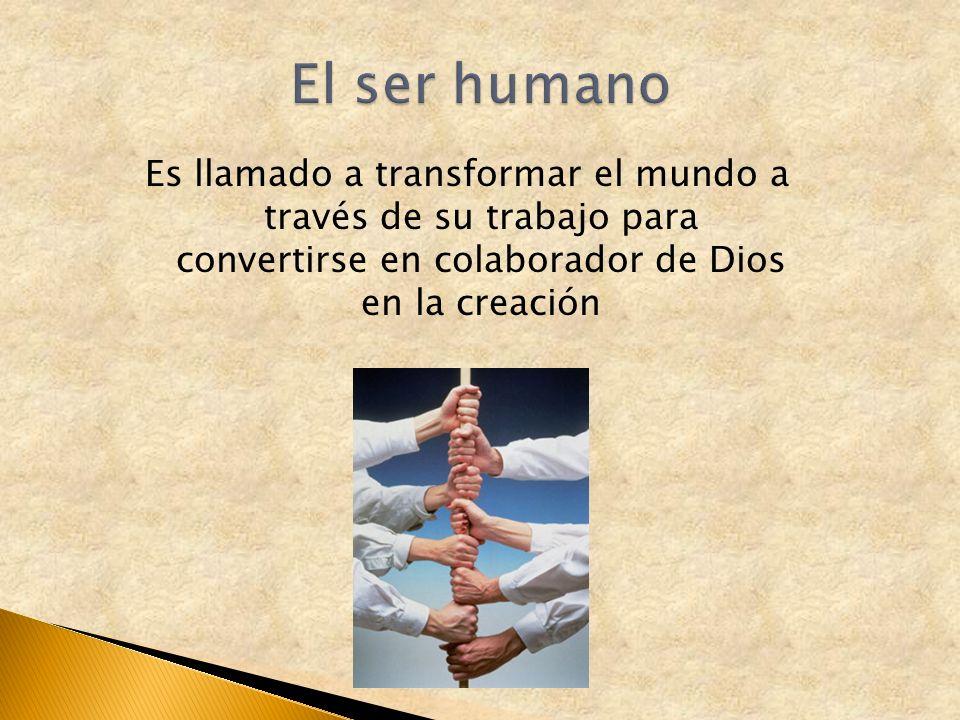 El ser humano Es llamado a transformar el mundo a través de su trabajo para convertirse en colaborador de Dios en la creación.