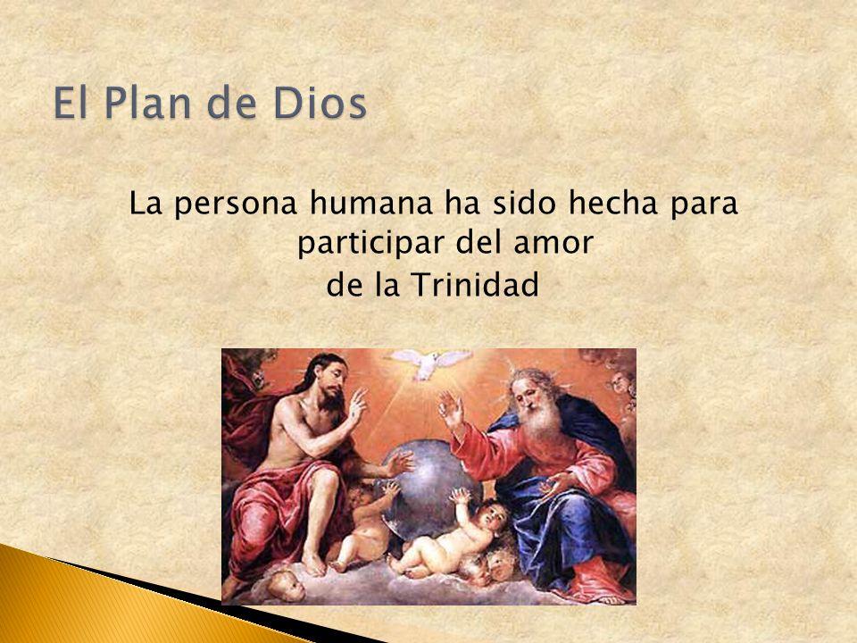 El Plan de Dios La persona humana ha sido hecha para participar del amor de la Trinidad