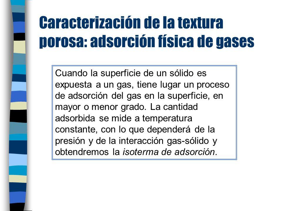 Caracterización de la textura porosa: adsorción física de gases