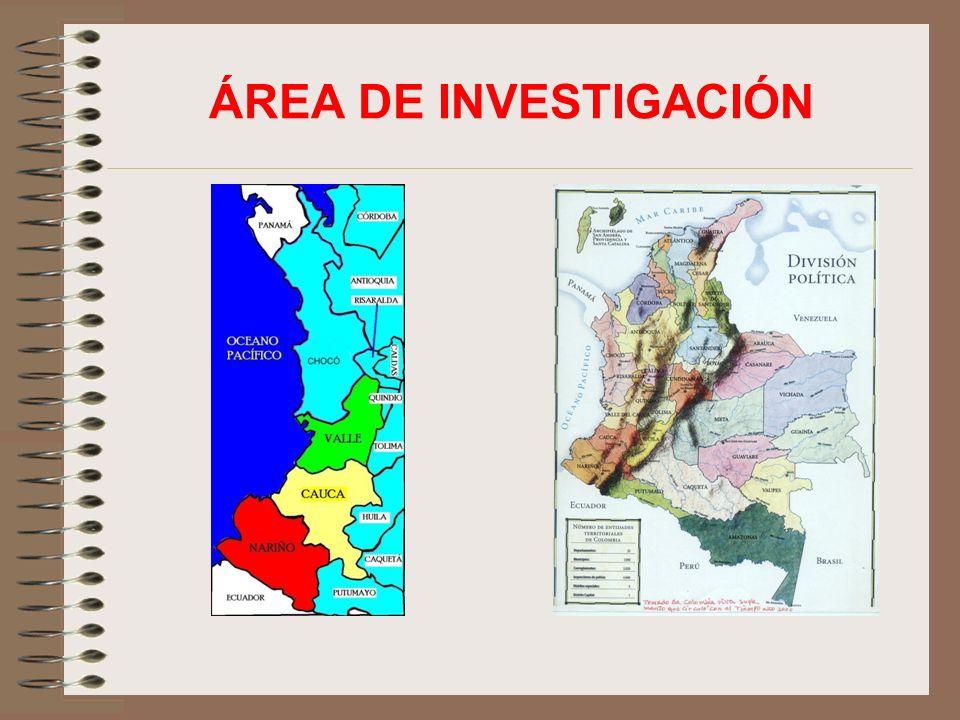 ÁREA DE INVESTIGACIÓN