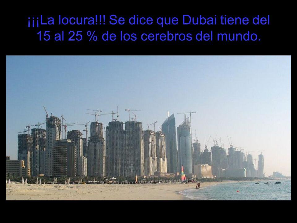 ¡¡¡La locura!!! Se dice que Dubai tiene del 15 al 25 % de los cerebros del mundo.