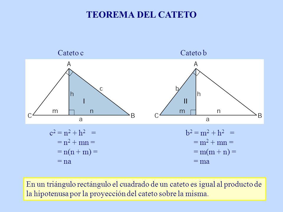 TEOREMA DEL CATETO Cateto c Cateto b c2 = n2 + h2 = = n2 + mn =