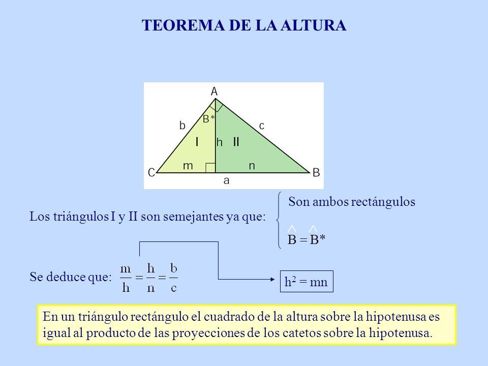 TEOREMA DE LA ALTURA  Son ambos rectángulos B B* =