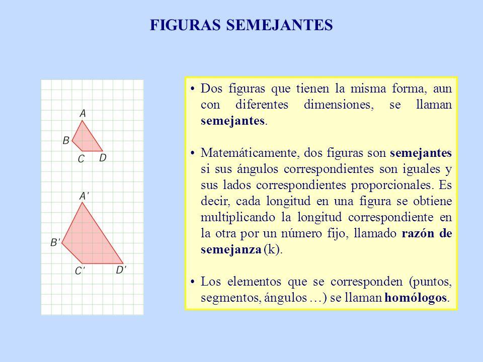 FIGURAS SEMEJANTES Dos figuras que tienen la misma forma, aun con diferentes dimensiones, se llaman semejantes.