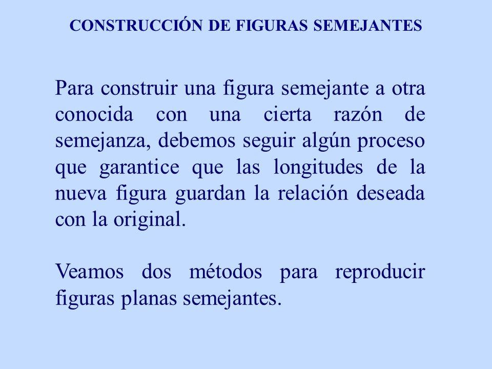 CONSTRUCCIÓN DE FIGURAS SEMEJANTES