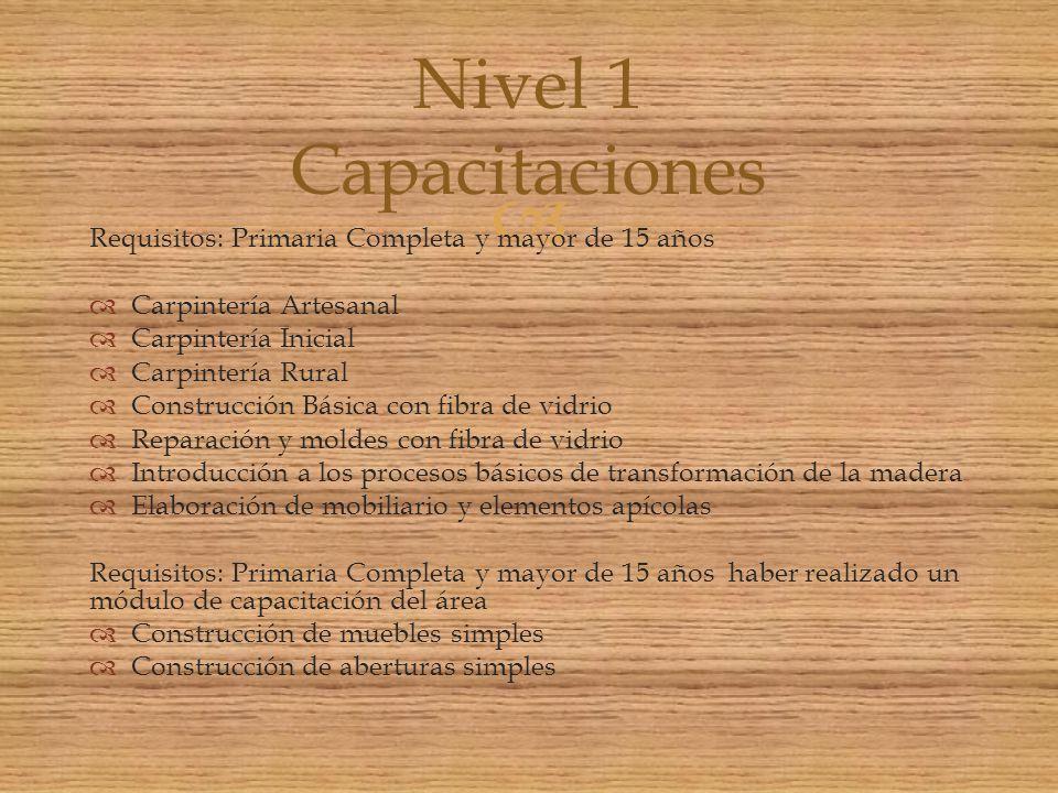 Nivel 1 Capacitaciones Requisitos: Primaria Completa y mayor de 15 años. Carpintería Artesanal. Carpintería Inicial.