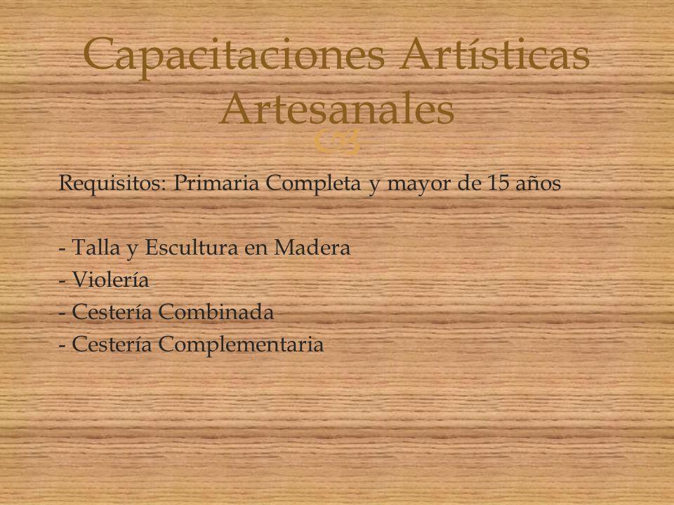 Capacitaciones Artísticas Artesanales