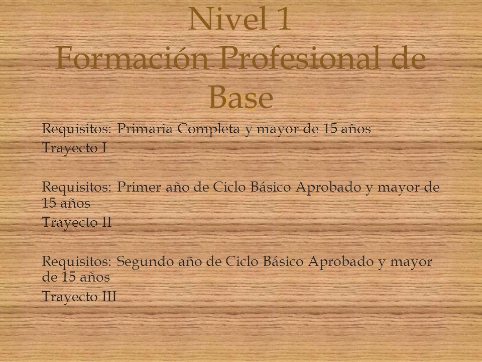 Nivel 1 Formación Profesional de Base