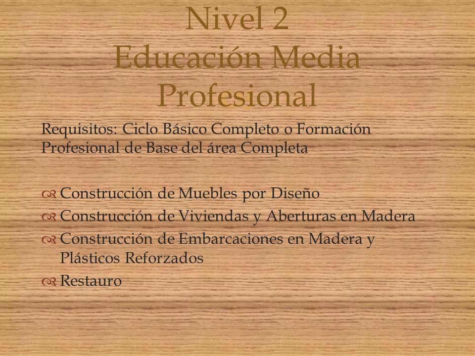 Nivel 2 Educación Media Profesional