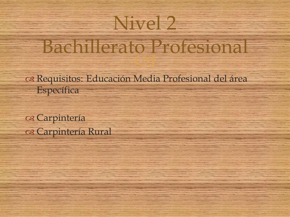 Nivel 2 Bachillerato Profesional