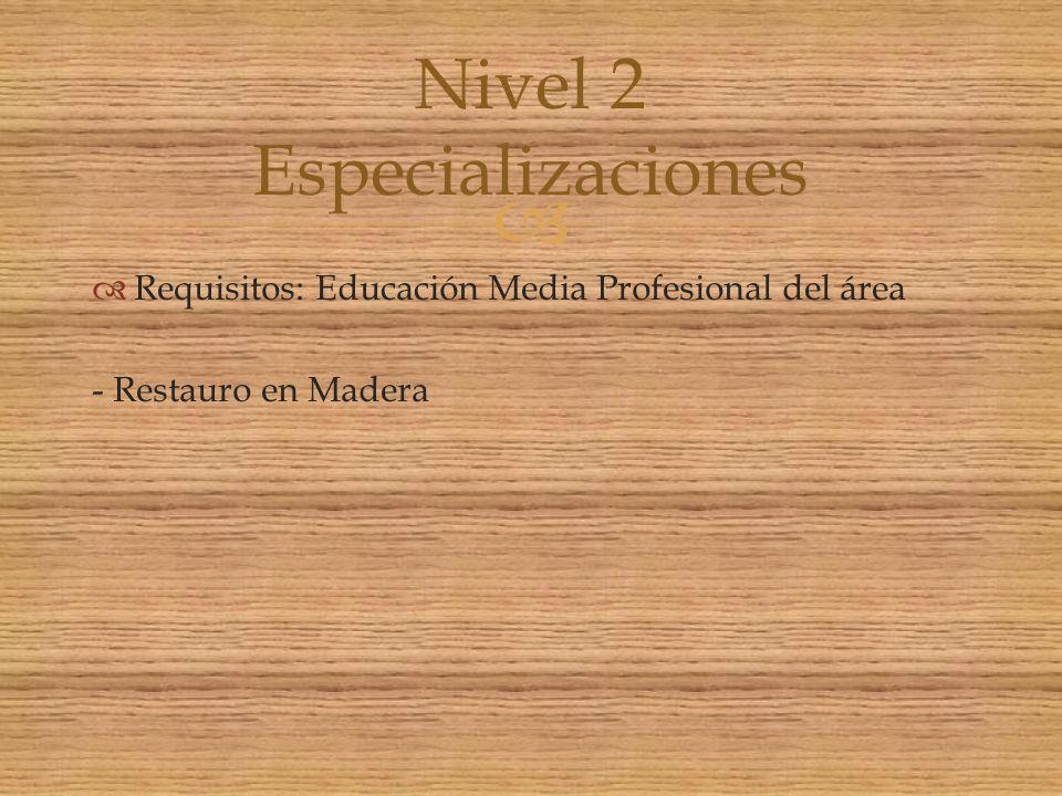 Nivel 2 Especializaciones