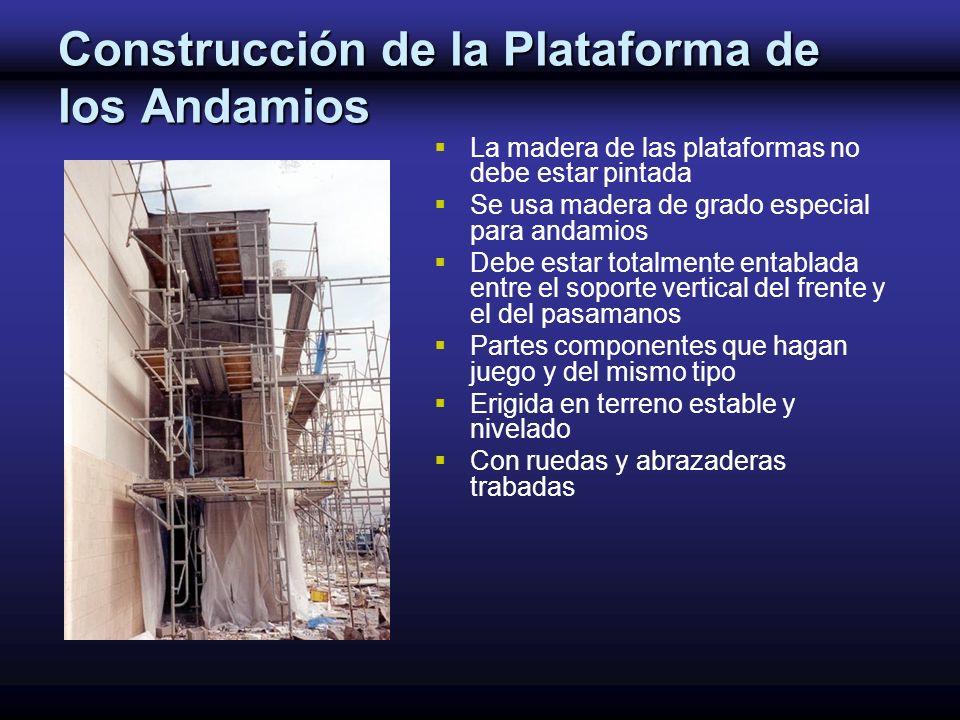 Construcción de la Plataforma de los Andamios